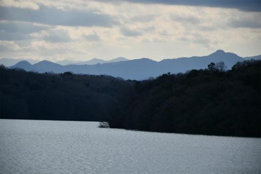 202300310・ニコン狭山湖2-02