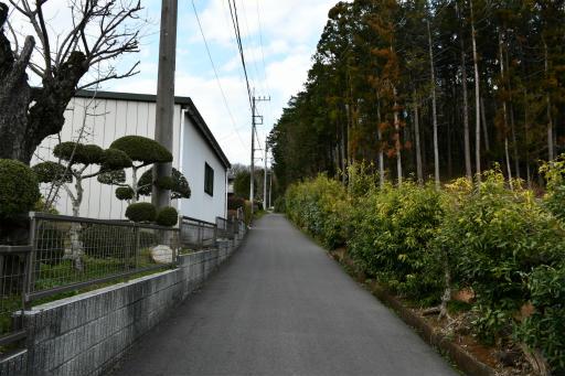 202300310・ニコン狭山湖2-08