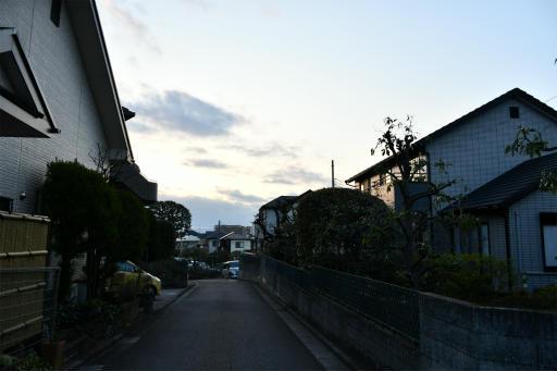 202300310・ニコン狭山湖2-22・すっかり夕方に