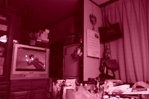 202300314・ニコンカメラいいね09・赤紫