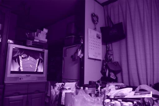 202300314・ニコンカメラいいね08・紫(青紫)