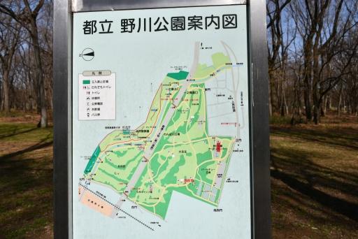 20200321・墓参り野川公園2-04・中