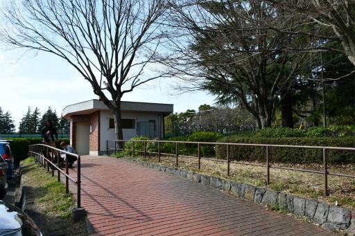 20200321・墓参り野川公園2-03