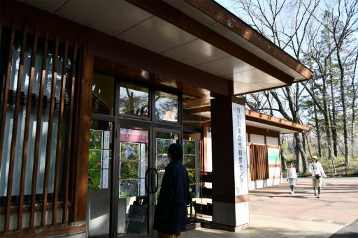 20200321・墓参り野川公園2-10