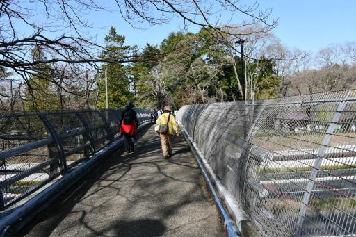 20200321・墓参り野川公園2-09