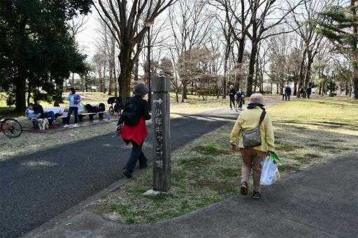 20200321・墓参り野川公園2-07