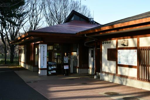 20200321・墓参り野川公園3-18