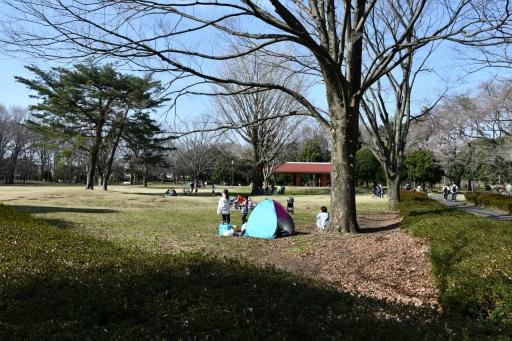 20200321・墓参り野川公園空12・グライダー・大