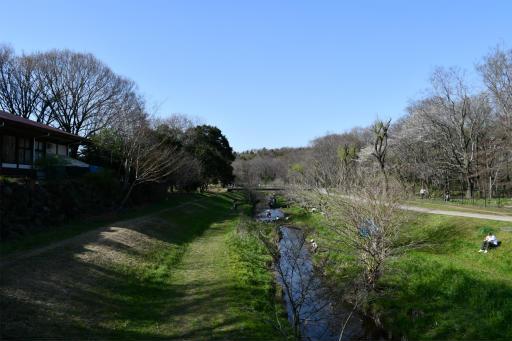 20200321・墓参り野川公園空19・野川と空