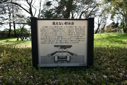 20200321・墓参り野川公園ネオン2