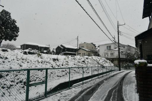 20200329・季節外れの雪04