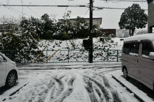 20200329・季節外れの雪03