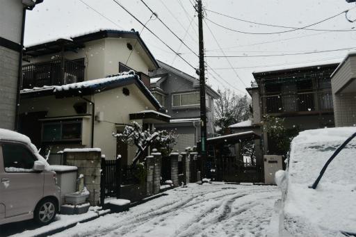 20200329・季節外れの雪12