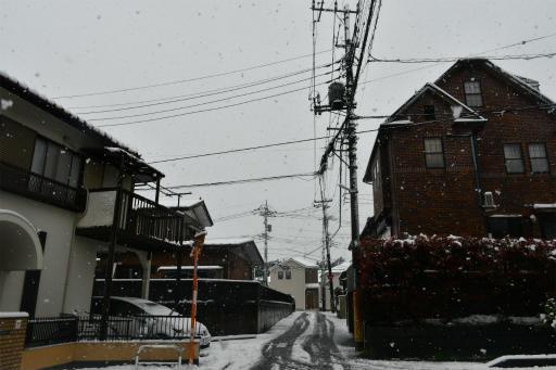 20200329・季節外れの雪11