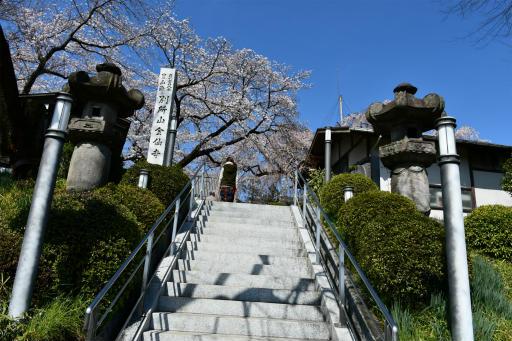 20200324・金仙寺と狭山湖空2