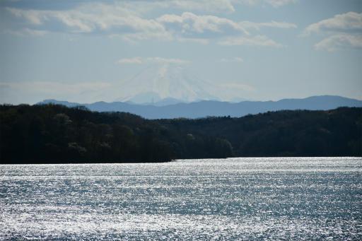 20200324・金仙寺と狭山湖空7・富士山が