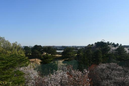 20200326・今日は荒幡富士散歩空4・荒幡富士山頂