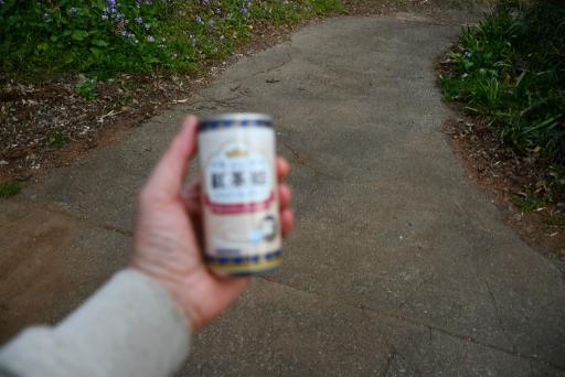 20200325・懲りずに狭山湖散歩ビミョー2