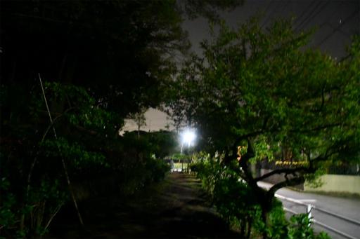 20200421・近所夜空05