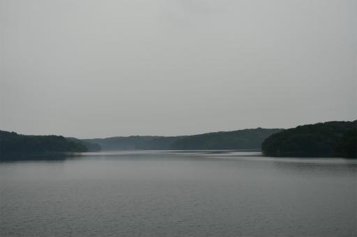 20200627・二度目の仕事休日に狭山湖へ散歩2-24