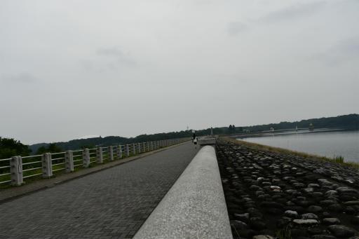 20200627・二度目の仕事休日に狭山湖へ散歩3-03