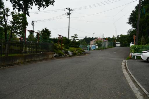 20200627・二度目の仕事休日に狭山湖へ散歩3-10