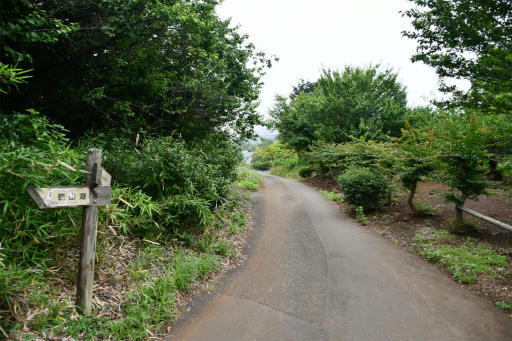 20200627・二度目の仕事休日に狭山湖へ散歩3-18