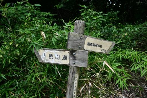 20200627・二度目の仕事休日に狭山湖へ散歩3-19・中