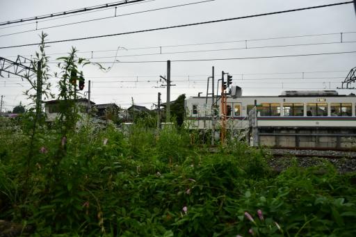 20200710・ホームセンターから秩父へ鉄4