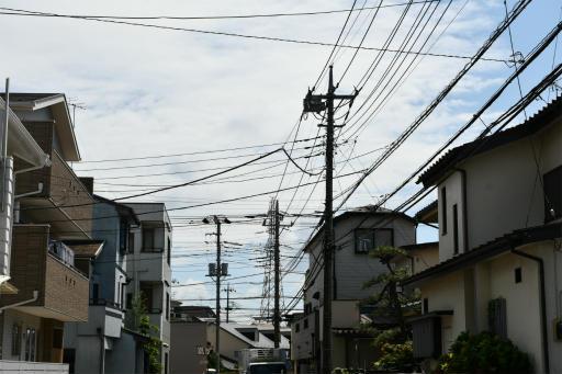 20200801・梅雨明け散歩11