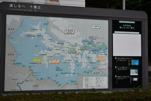20200809・近所植物秩父&山梨ネオン06・わさび沢