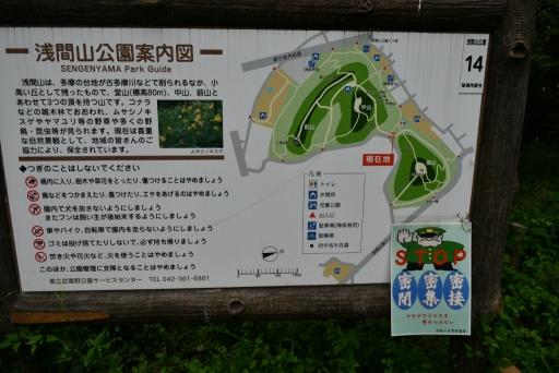 20200919・多磨霊園2-09・中