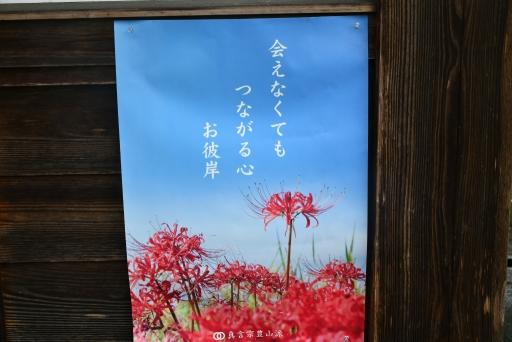 20200923・群馬墓参り3-08・中