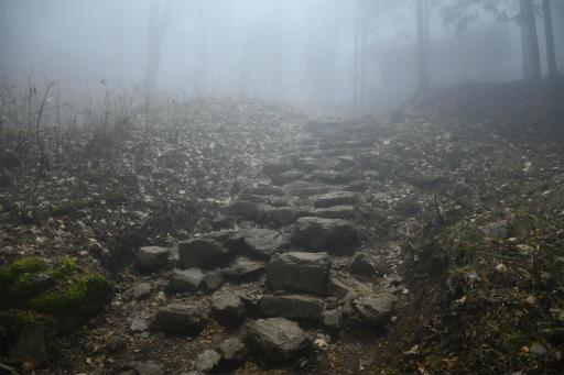 20201127・大岳山へ5-03