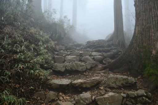20201127・大岳山へ5-02