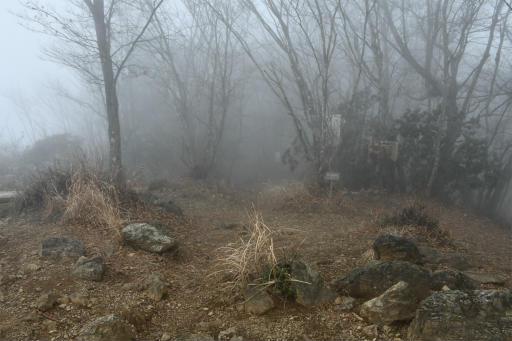 20201127・大岳山へ6-05・12時11分、下山