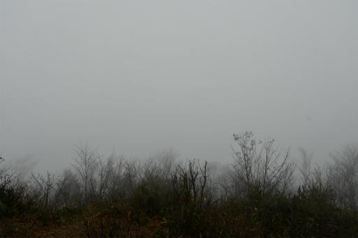 20201127・大岳山へ6-01・とにかく何も見えない