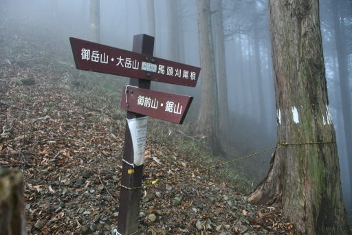 20201127・大岳山へ6-11・12時33分左折・中