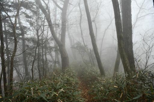 20201127・大岳山へ7-03