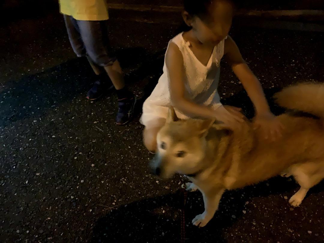 20200925こまちゃん夜散歩で小学生女子にモテる1
