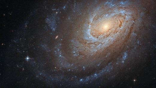 50 渦巻銀河