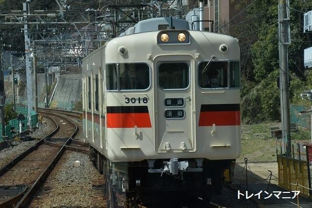 DSC_4083.jpg