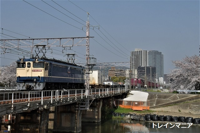 DSC_5173.jpg