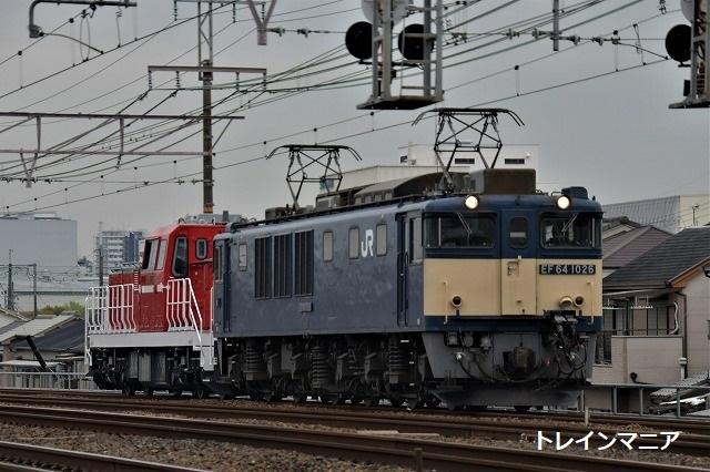 DSC_6190.jpg