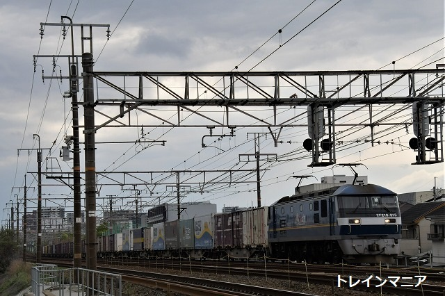 DSC_6931.jpg