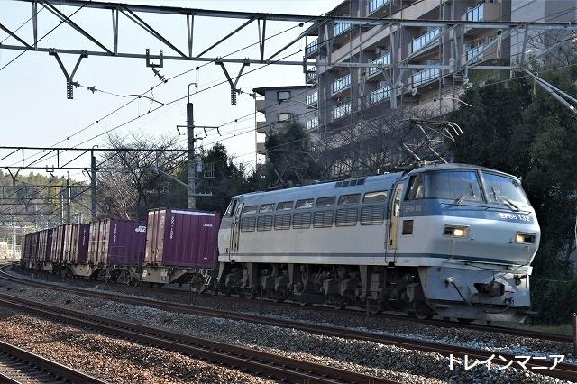 DSC_7134.jpg