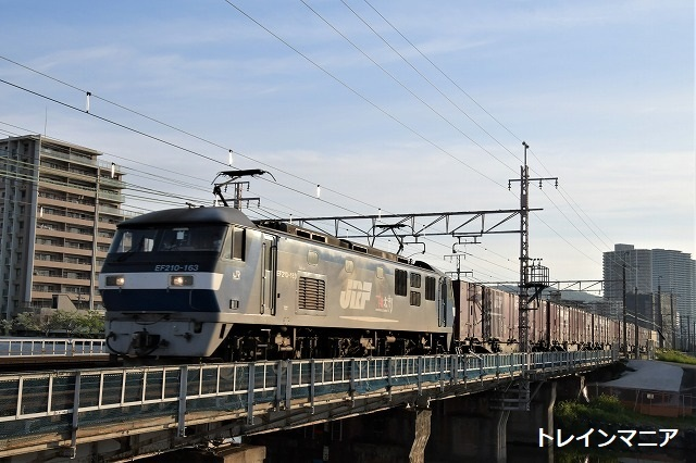 DSC_7561.jpg