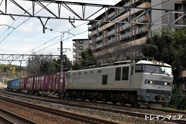 DSC_8655.jpg