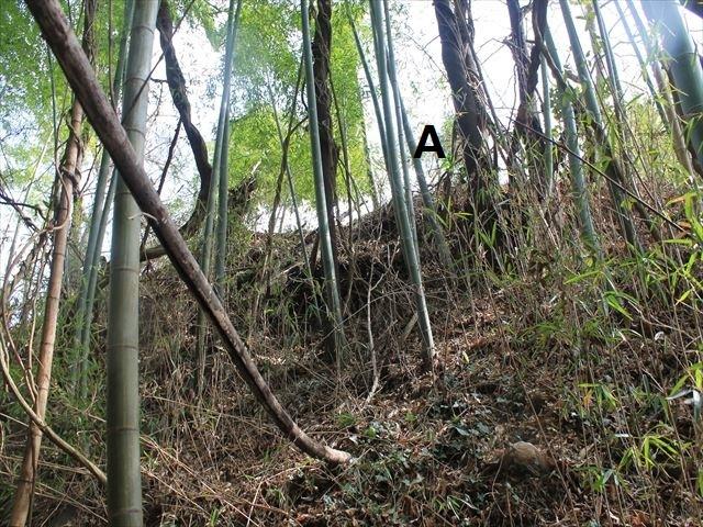 小浜城①IMG_6593