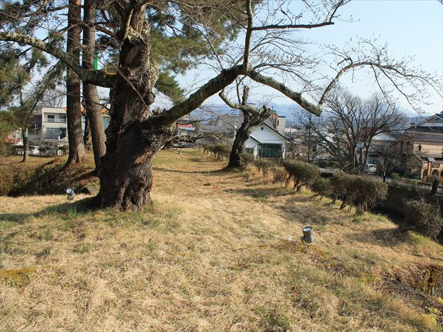 鶴ヶ城③IMG_6931